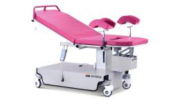 Birthing Beds